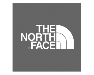 Northface gray Logo