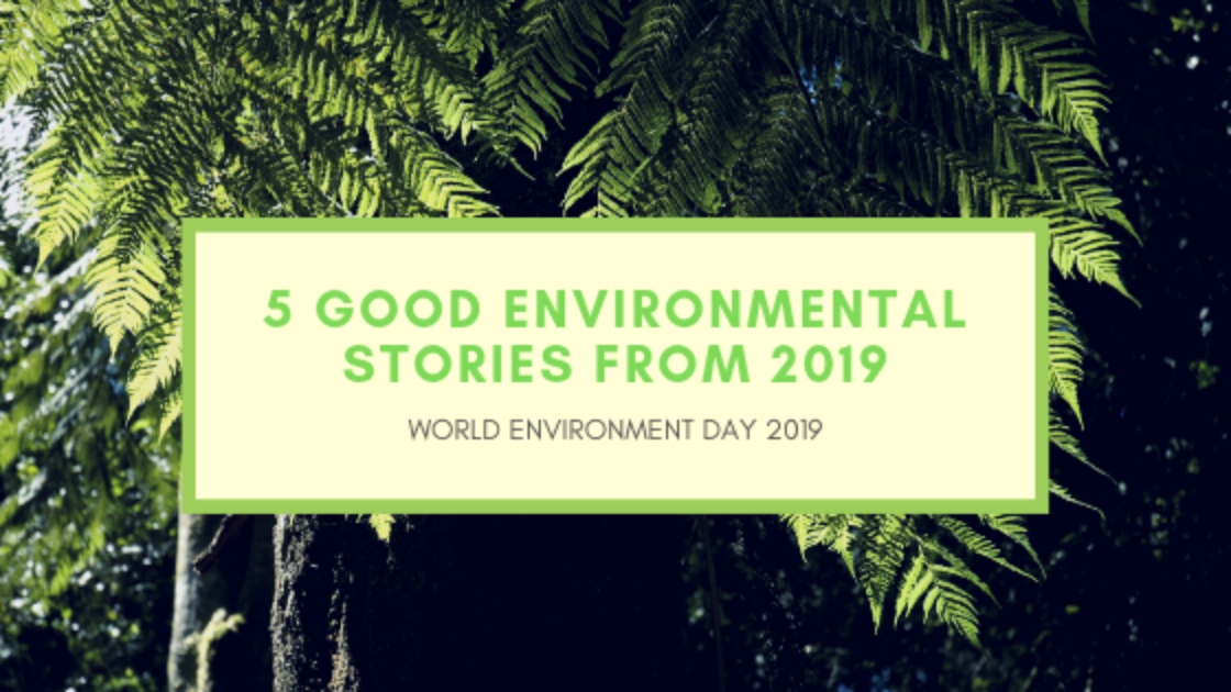 World Environment Day: 5 Good Environmental Stories